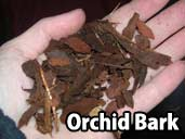 Orchid Bark - a suitable substrate for Paraguayan Rainbow Boa
